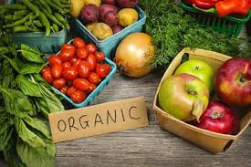 Organic Foods - Health Hutt, Michigan